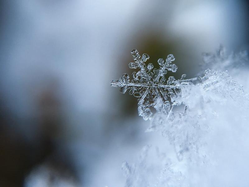winter inspection pervidi