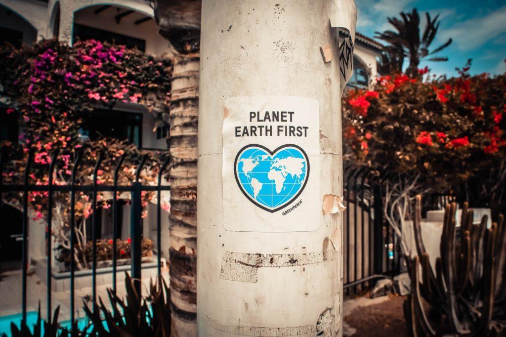 Paperless Environmental and Ecogeneration Inspection pervidi