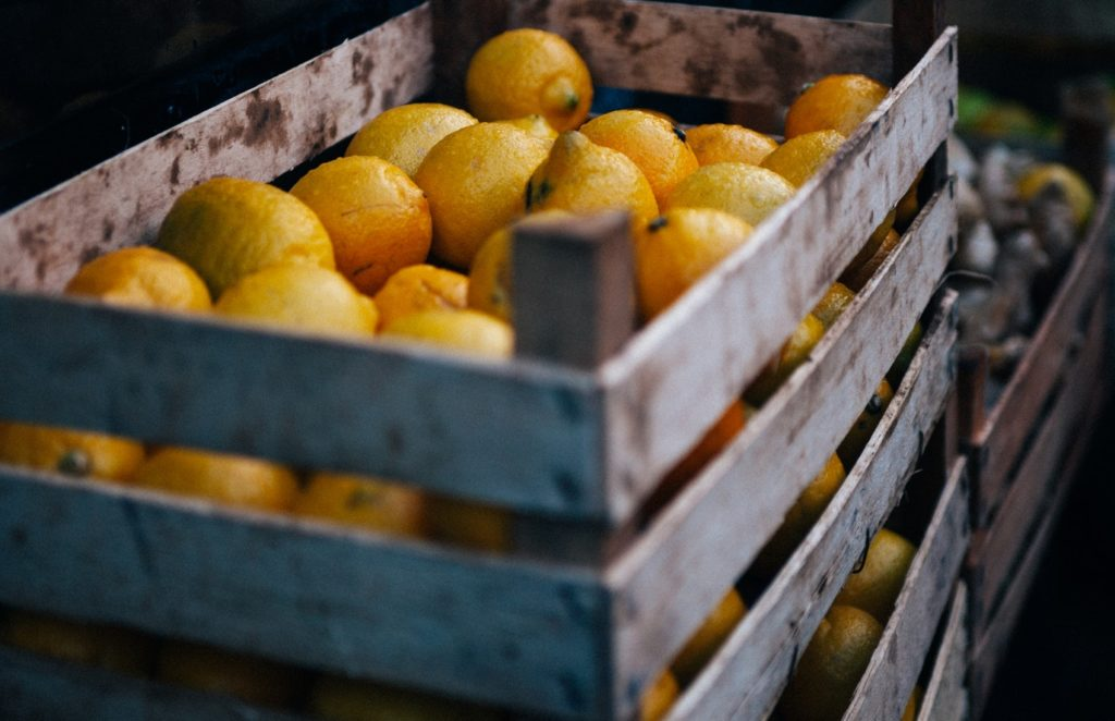 Can mobile data collection and automation be the solution for food inspection in Australia pervidi